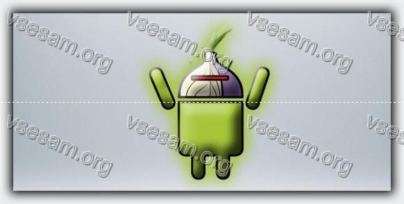 картинка браузер тор