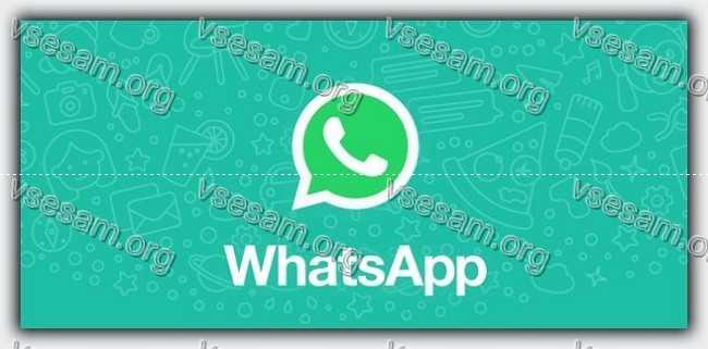 лого ватсап